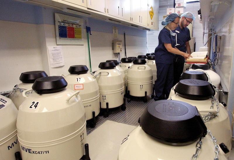 Un embryologiste vérifie les dossiers d'entreposage au Reproductive Science Center à San Ramon, Californie.