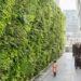 LaREM, le parti des murs végétalisés